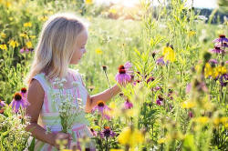 Allergie Gräser Symptome Diagnose Therapie