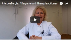 Pferdeallergie Allergene Therapieoptionen